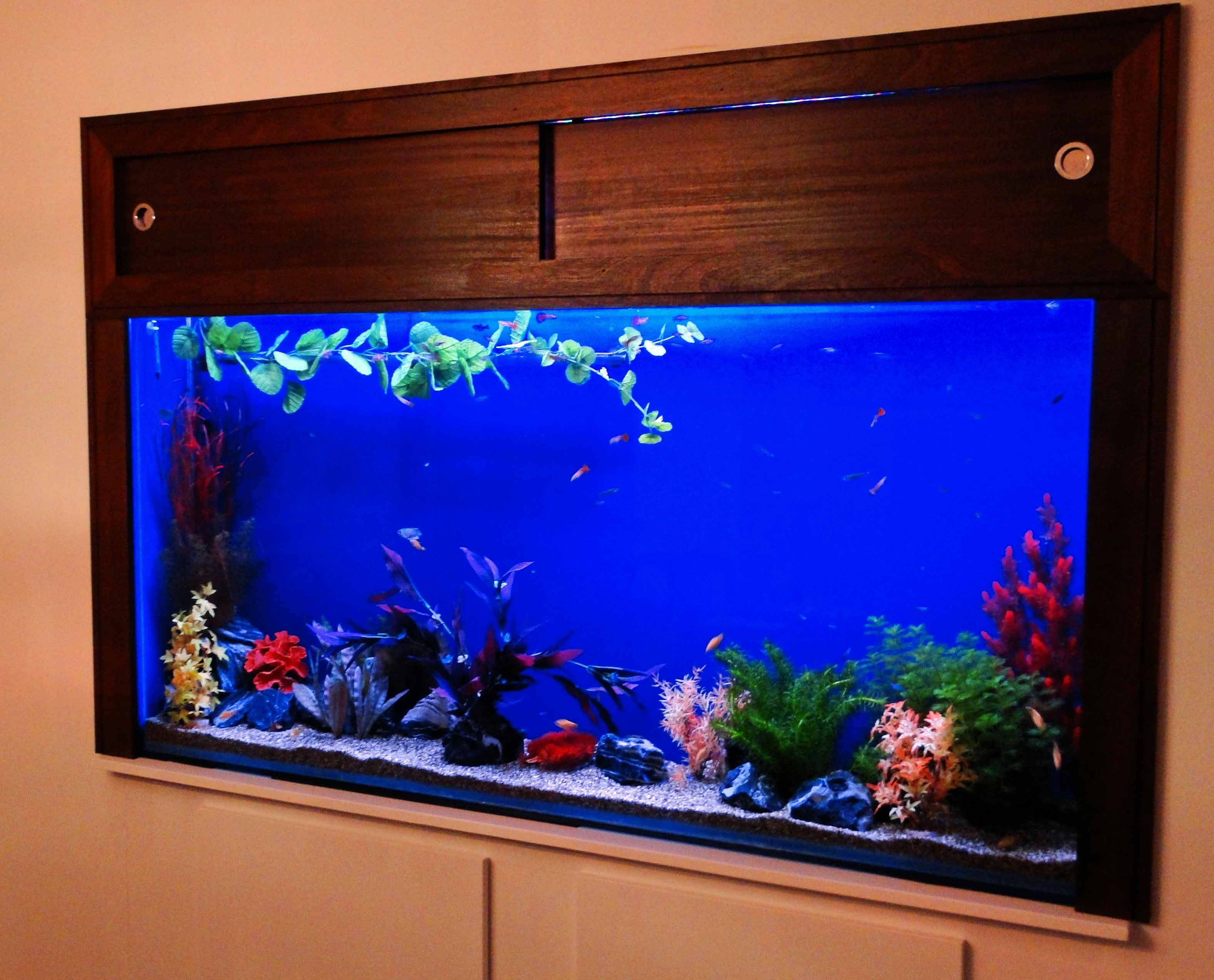 Aquarium installation maintenance nemo 39 s world for Fish tank built into wall